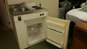 Fridge/stove/sink mini combo unit