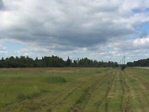 20 +/- acres backing on buffalo bay (slave lake )