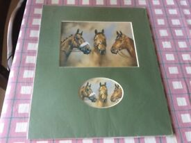 A selection of horse prints