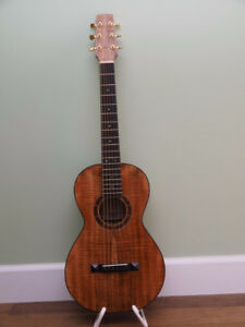 One of a Kind Acoustic Guitar