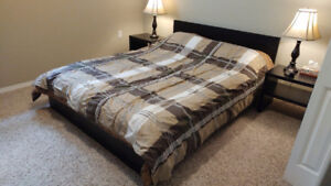 Two Queen Comforters (Price is for both, will sell separately)