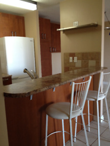 Beautiful Large 1 Bedroom Condo in Oliver - Centurian Tower