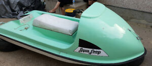 Aqua Loop Personal Watercraft