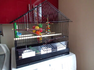 Bird cage (medium size) with all accessories