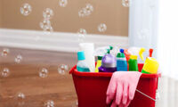 EUROPEAN CLEANING LADY 647-444-0553