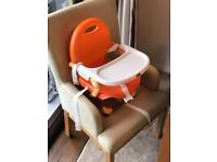 Chicco toddler seat