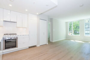Brand new studio with den, great building, prime location.