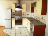 SHORT TERM LET FOR AUGUST ONLY - TWO BEDROOM LUXURY APARTMENT - £750 PER MONTH