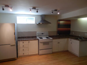 Bright, spacious basement suite close to LRT and U of A
