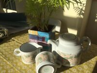 Hornsea Pottery Cascade -dinner and tea set