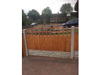 Feathered fence with trellis x6
