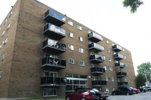 435 Grey Street - 2 Bedroom Apartment for Rent
