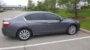 2013 Honda Accord EX-L Sedan. Low Kms!!!