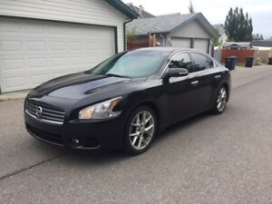 "Nissan Maxima ""sport package"""