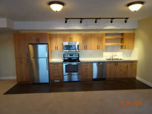 2bdrm 1bth Walk out Apartment