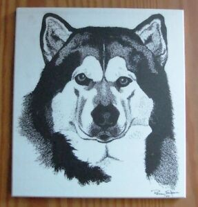 Picture of Alaskan Malamute Head on tile