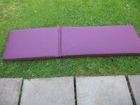 Steamer Chair Purple padded cushions (pair) New