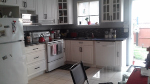 Beautiful 2 bedroom ground level suite - small breed dog allowed