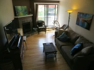 Lower Mount Royal 3 bedroom newly renovated $1650