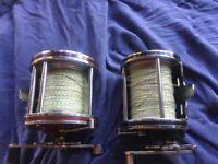 Two sea fishing reels