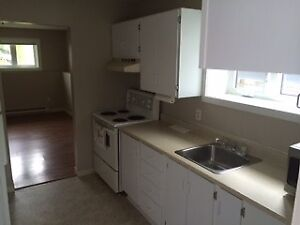 Bright, modern, 1-Bedroom apartment (Mt. Pearl)