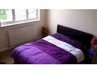 Double room in Crystal palace. All bills included