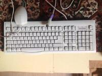 Legacy Computer Keyboard and Mouse (PS2 to DIN K/b and PS2 mouse)