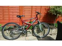 Raleigh 18 gear mountain bike