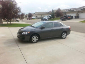 2010 Toyota Corolla CE - Excellent Condition