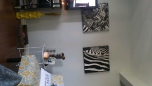 Wooden zebra prints