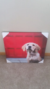 Dog picture print