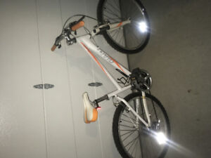 Giant Boulder bike - great condition