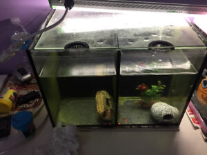 Duo tank for sale