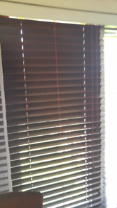 windows blinds