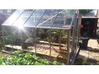 10 x 8 greenhouse