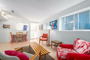 1 BR Basement Suite Centrally Located Main Street Riley Park