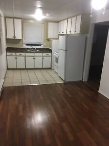 2 bdrm house Welland $1095/month Aug 1st