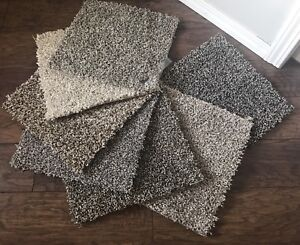 Beautiful Shaw Carpet - Great for Basements and Family rooms!