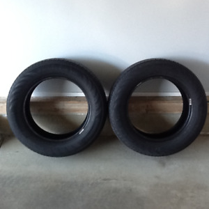 Two Radial Tires 215/60R16