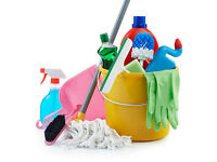 fast cheap cleaner looking for work