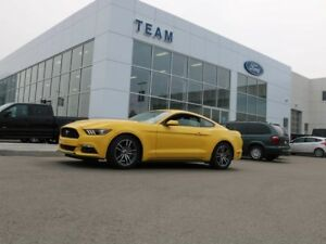 2017 Ford Mustang EcoBoost 2dr Fastback