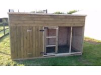 10ft x 4ft x 5ft6inch dog kennel and run