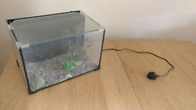 Fish Tank (Small) - Quayside Central Newcastle