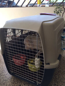Airline Approved Dog Kennel - Large/XL Breed