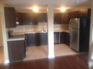 1 bedroom apartment for rent in downtown Kemptville