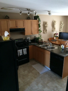 Beautiful Upper Condo with Granite Counter Tops for Rent