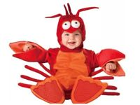 InCharacter Baby Lil' Lobster Costume - Brand new!!- unused - £25