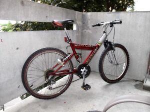 GRAVITY   INFINITY   Mountain Bike 21 speed