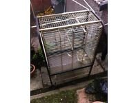 Parrot cage £35