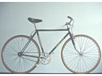 Gorgeous Lightweight Single Speed Freewheel/not fixie, Reynolds 531 serviced